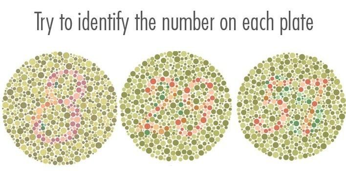 The Vision Of Color Blindness