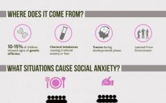 Source: http://www.lovethispic.com/image/176478/facts-about-social-anxiety-disorder