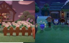 Screenshot of my Animal Crossing game play: the left shows the player; the right shows a ceremony game-play with the animals.